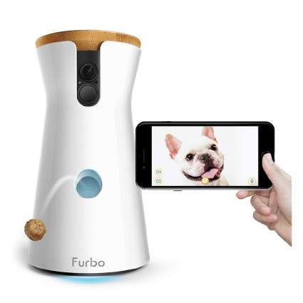 Furbo dog camera with smartphone