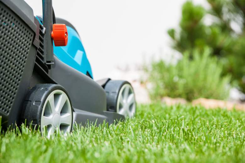 lawn mowers under 300