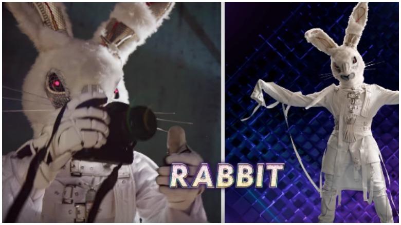The Rabbit Masked Singer, Clues for The Rabbit Masked Singer