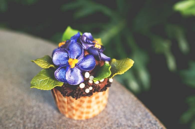 Potion Purple African Violet cupcake