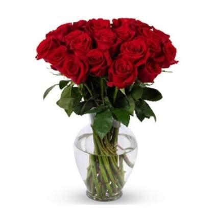 benchmark 2 dozen red roses