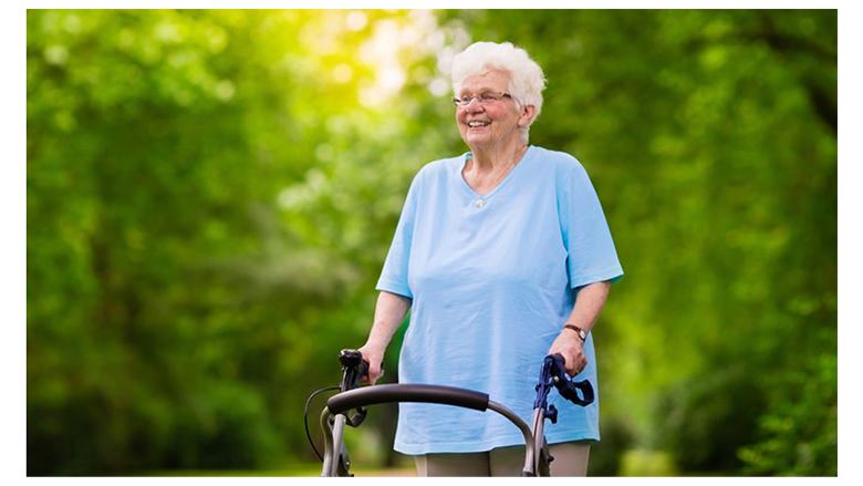 17 Best Walkers For Seniors Er S