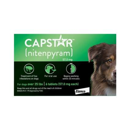 Capstar flea and tick prevention