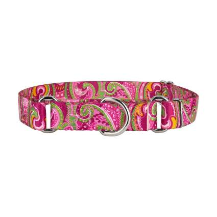 Country Brook Design paisley cool dog collar