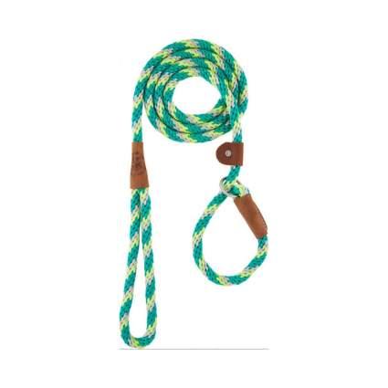 Mendota slip lead dog leash