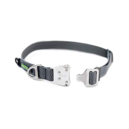 Mighty Paw metal hardware cool dog collar