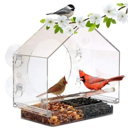 suction cup window birdfeeder