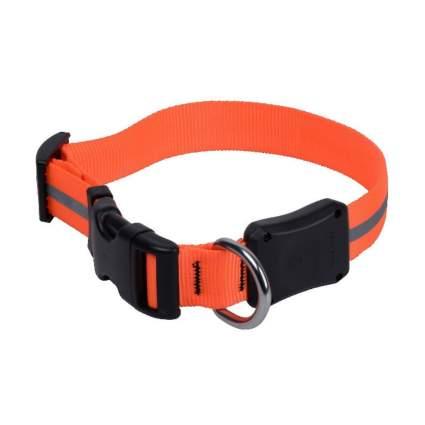 NiteIze light up dog collar best dog collar