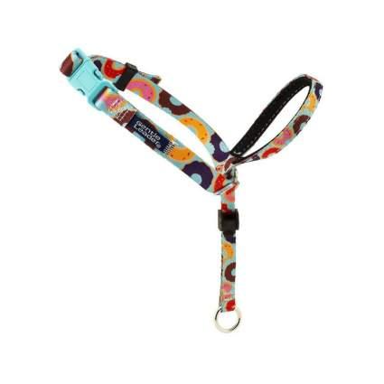 PetSafe gentle leader chic design cool dog collar