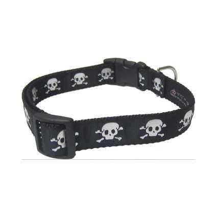 Sassy Dog skull and crossbones cool dog collar