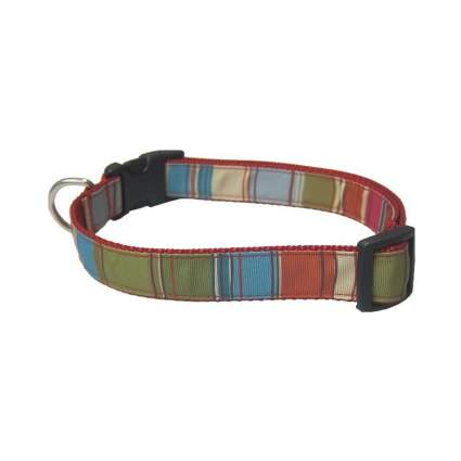 Sassy Dog stripes cool dog collars