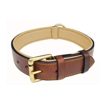 Soft Touch Collars best dog collar