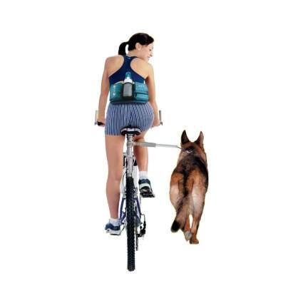 Walky Dog bicycle dog leash