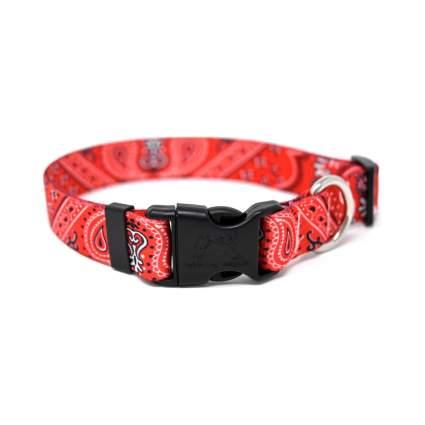 Yellow Dog Design bandana pattern cool dog collar