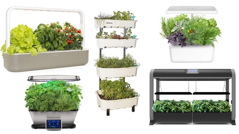 automatic indoor gardens