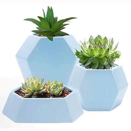 blue ceramic hexagon succulent planters