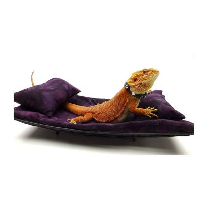 Carolina Designer Dragons chaise lounge best bearded dragon accessories