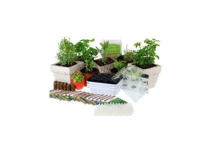 Culinary Indoor Herb Garden Starter Kit by Mountain Valley Seed Company