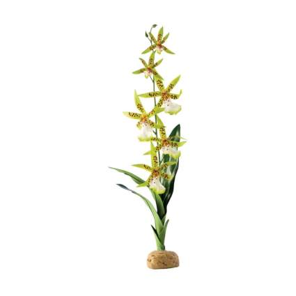 exo terra spider orchid plant bearded dragon tank decor