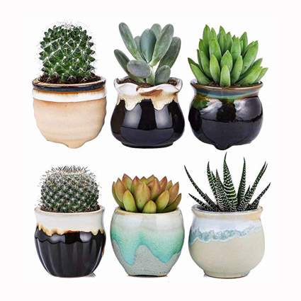 glazed ceramic succulent planter set