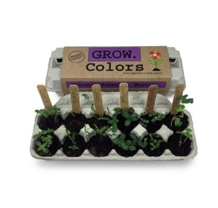 grow colors garden for kids