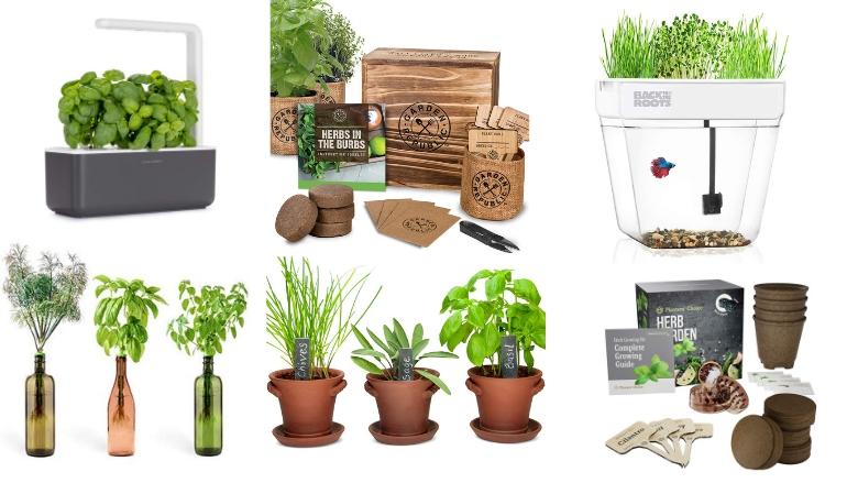 15 best kitchen herb gardens: your buyer's guide (2019