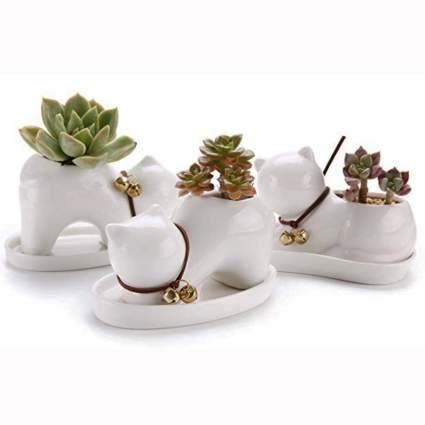 white ceramic kitten succulent pots