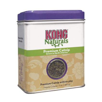 Kong catnip best cat treats