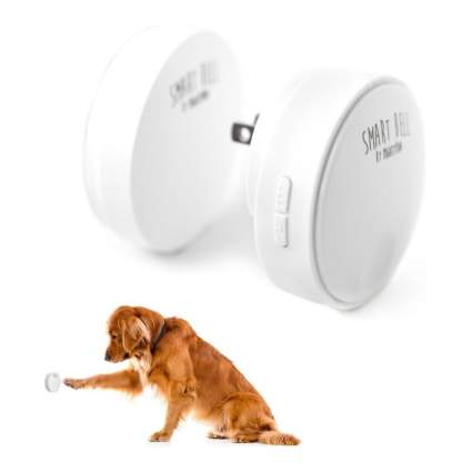 Mighty Paw dog doorbell best dog gadgets