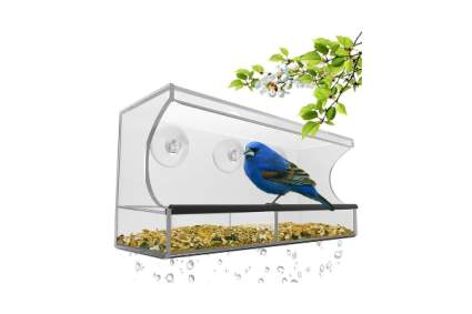 Nature's Hangout Window Bird Feeder with Strong Suction Cups & Seed Tray
