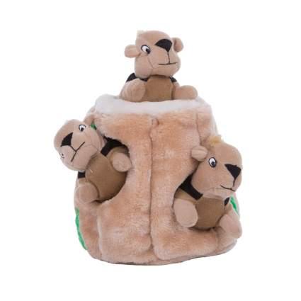 Outward Hound hide-a-squirrel cool dog toys