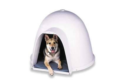 Petmate dogloo best dog house