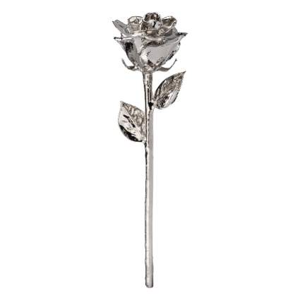 platinum forever rose