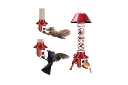 Roamwild PestOff Red Squirrel Proof Cardinal Bird Feeder