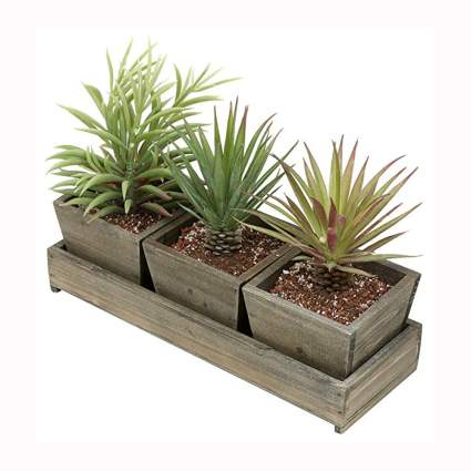 rustic wood succulent planter with tray