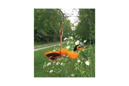 Songbird Essentials Copper Oriole Fruit and Jelly Feeder