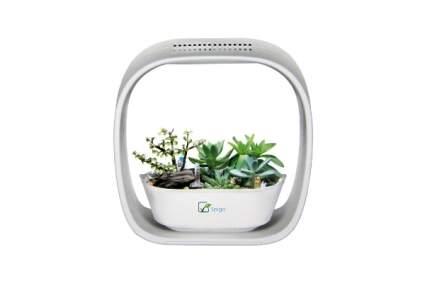 Spigo Indoor LED Light Grow Garden