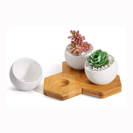 white ceramic ball shaped planters with hexagon trays