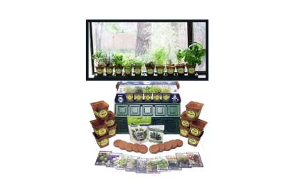 Windowsill Herb Garden Kit by Sustainable Seed Company
