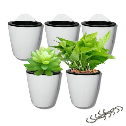 5 Pack Lazy Flower pots