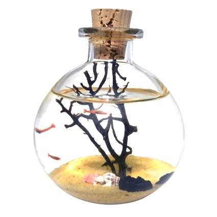 Mini fishbowl in a bottle