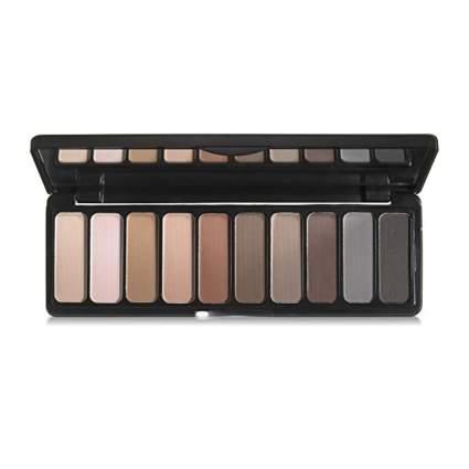 ten color earthy matte eyeshadow palette