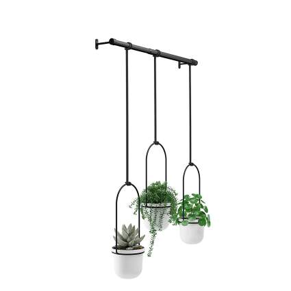 Umbra Triflora Hanging Planter for Window