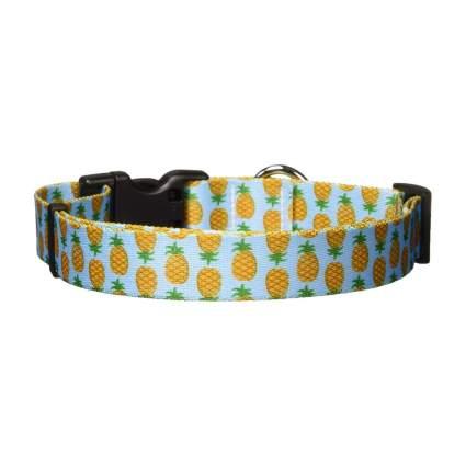 Yellow Dog design pineapple cool dog collar