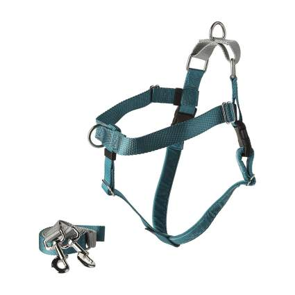 2 Hounds Design dog harness camping with dogs