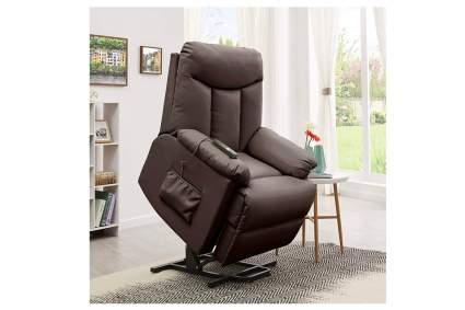Domesis Renu Leather Wall Hugger Power Lift Chair