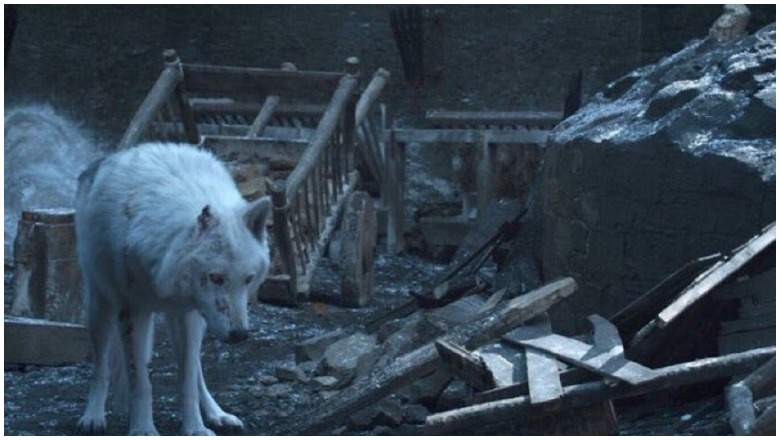 Ghost on Game of Thrones