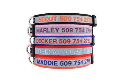 GoTags embroidered dog collar