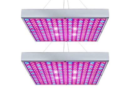 Hytekgro LED Grow Light 45W Plant Lights Red Blue White