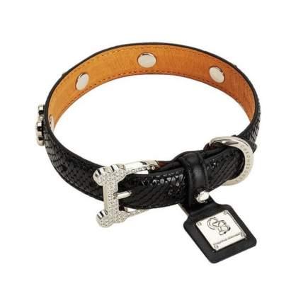 chrome bones snakeskin leather luxury dog collar
